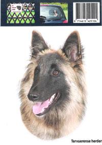 https://www.dierenspullen.shop/mwa/image/meerinfo/10-Tervuerense-Herder.jpg
