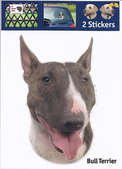 https://www.dierenspullen.shop/mwa/image/meerinfo/16-Bull-Terrier.jpg