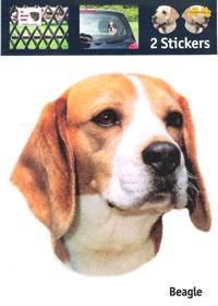 https://www.dierenspullen.shop/mwa/image/meerinfo/26-Beagle.jpg