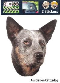 https://www.dierenspullen.shop/mwa/image/meerinfo/47-Australian-Cattledog.jpg