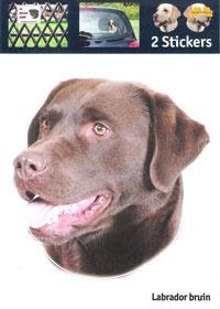 https://www.dierenspullen.shop/mwa/image/meerinfo/9-Labrador-bruin.jpg
