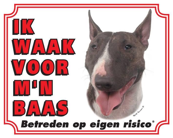 https://www.dierenspullen.shop/mwa/image/meerinfo/Bull-Terrier.jpg