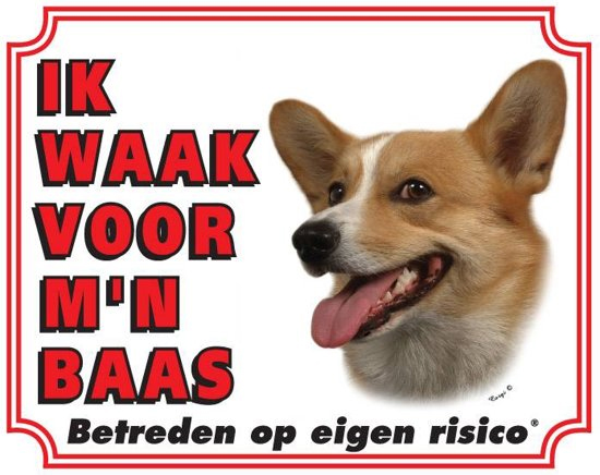 https://www.dierenspullen.shop/mwa/image/meerinfo/Corgi.jpg