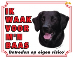 https://www.dierenspullen.shop/mwa/image/meerinfo/Flatcoated-Retriever.jpg