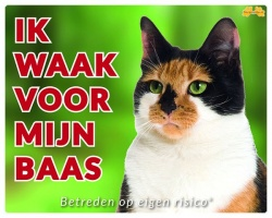 https://www.dierenspullen.shop/mwa/image/meerinfo/Gevlekte-Kat.jpg