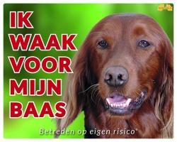 https://www.dierenspullen.shop/mwa/image/meerinfo/Ierse-Setter-GR.jpg