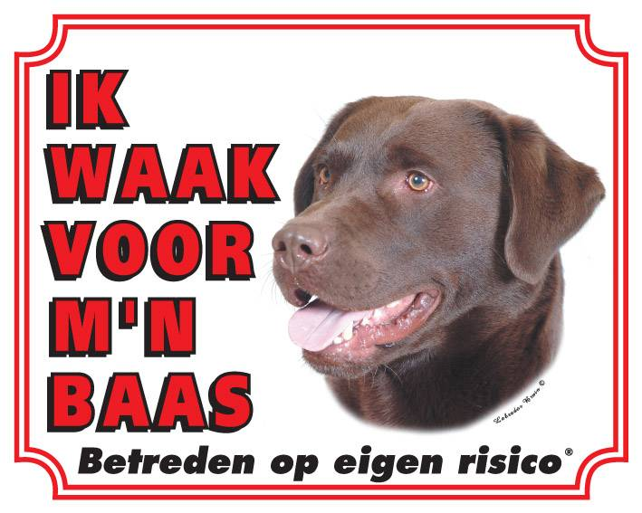 https://www.dierenspullen.shop/mwa/image/meerinfo/Labrador-Bruin.jpg