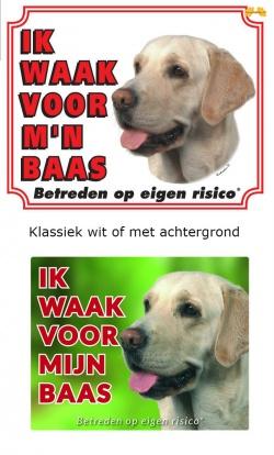 https://www.dierenspullen.shop/mwa/image/meerinfo/Labrador-blond.jpg