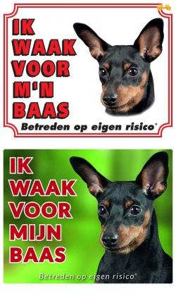 https://www.dierenspullen.shop/mwa/image/meerinfo/Miniatuur-Pinscher-zwart.jpg