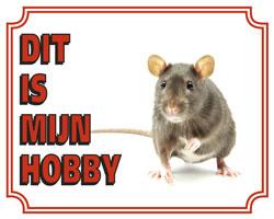 https://www.dierenspullen.shop/mwa/image/meerinfo/Rat-65.jpg