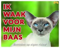 https://www.dierenspullen.shop/mwa/image/meerinfo/Siamees.jpg