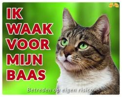 https://www.dierenspullen.shop/mwa/image/meerinfo/Tabby.jpg