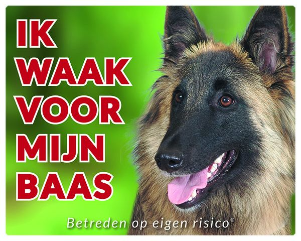 https://www.dierenspullen.shop/mwa/image/meerinfo/Tervuerense-Herder-GR.jpg