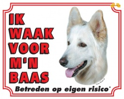 https://www.dierenspullen.shop/mwa/image/meerinfo/Witte-Herder.jpg
