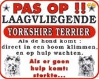 Pas op!! Laagvliegende Yorkshire Terrier