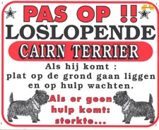 Pas op!! Loslopende Cairn Terrier