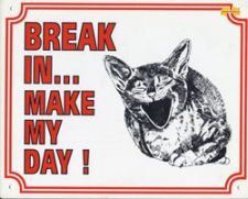 Break in make my day Kat