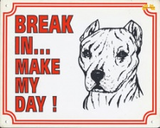 Break in make my day Pitbull