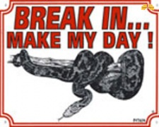 Break in make my day Python
