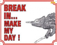 Break in make my day Kameleon