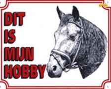 Dit is mijn hobby Paard