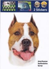 Kop Am. Staffordshire Terrier