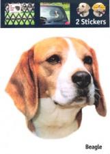 Kop Beagle