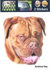 Kop Bordeax Dog
