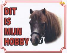 Dit is mijn hobby Pony
