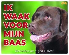 Kleur: Ik waak voor m'n baas Labrador bruin