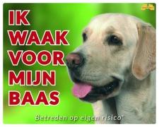 Kleur: Ik waak voor mijn baas Labrador blond