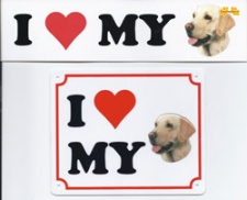 I love my Labrador blond