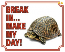Break in make my day Schildpad